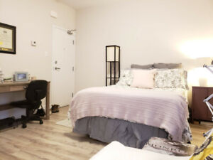 Large and Bright Bachelor Apartment May 1