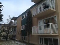 Elmwood Park Multi-family