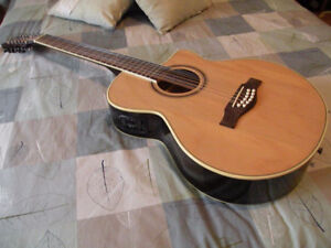 12 string thin body cutaway acoustic electric. One year old.