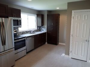 Petrolia - 2 Bedroom Renovated Townhouse Available for Rent!