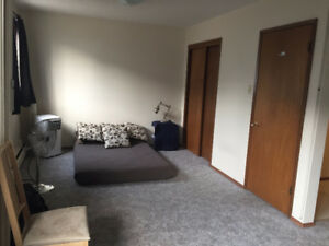 University Area - Spacious Renovated Bachelor At A Reduced Rate!
