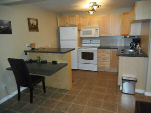 Upgraded and Furnished 1 Bedroom Suite Downtown Drayton Valley