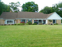 Gorgeous home in Wheatley on 3.75 acres