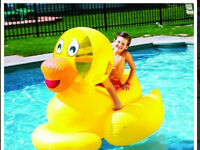 Swimline inflatable Giant Duck