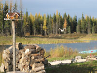 Affordable Cottage Lots 8 minutes from Falcon Lake