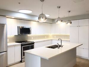 Stunning two bedroom penthouse apartment