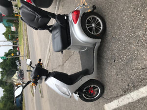 Ebike/mobility scooter