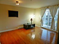 Beautiful 1 bedroom condo on Cote des Neiges street.