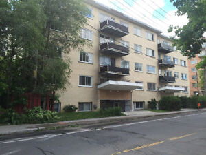 beautiful 31/2 near concordia loyola campus available now