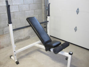 Olympic Multi Purpose Bench gym weights exercise