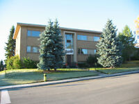 LARGE 1 BDRM BY BRITANNIA SHOPPING CENTRE & CHINOOK CENTRE