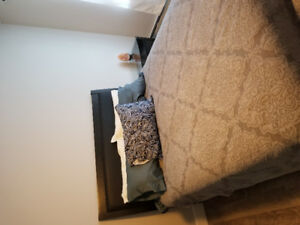 Like new queen bed set with brand new mattress!!