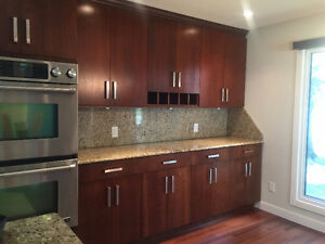 SOLID WOOD Kitchen Cabinets/Countertop