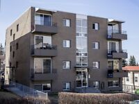 Fully Renovated 1bdrm condo for rent in Bankview