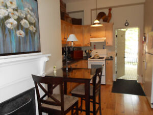 One bedroom fully furnished apt. steps to downtown Hfx.