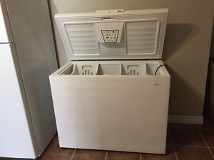 Large Chest Freezer- White