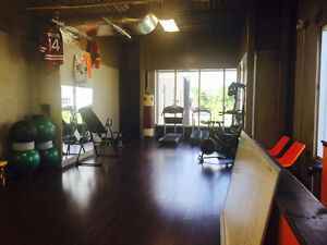 Personal training in a private gym Cambridge Kitchener Area image 5