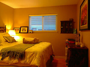 Well Maintained Basement Suite: Cable, Internet & Hydro included