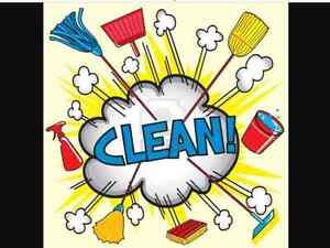 Cleaning, organizing, assist with shopping etc Kitchener / Waterloo Kitchener Area image 1