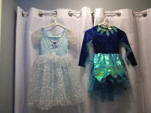 Costume  De  Princesse  au  Choix  $5chaque  6x