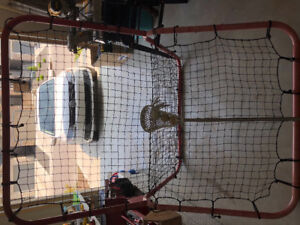 Lacrosse practise net with a stick and 3 balls