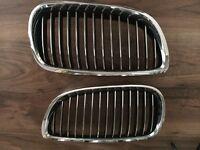BMW Kidney grills (E92)
