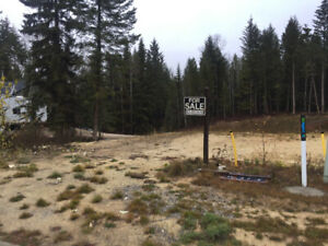 Large Residential Building Lot in Golden, BC