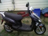 Kymco Moped for Sale