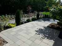 Professional and affordable landscaping/property maintenance