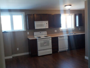 Modern 2-bedroom apartment available St. John's Newfoundland image 4