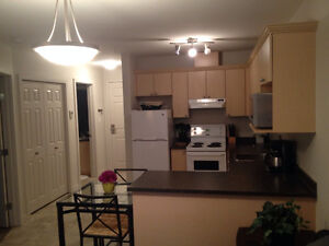 1 BDR CONDO - Everything Inc. - Avail Dec 1st
