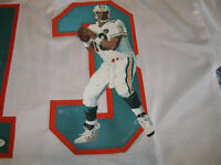 Signed Painted Dan Marino Autographed Miami Jersey.