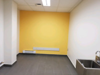 CAPITAL PAINTERS Since 1990 (613)302-9295 call text or email