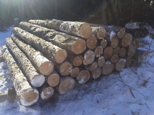 "Cedar posts 6""-9""x 9'long"