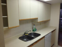 USED FULL KITCHEN CABINETS & Countertop