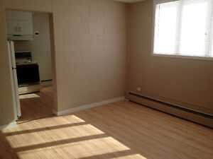 1 Bed Suite for Rent - Golden Mile - Available Feb 1
