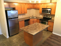 Stunning Upgraded 2 Bed/2 Bath Condo for Rent in Terwillegar