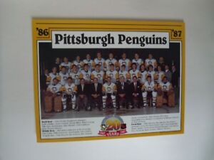 11986-87-PITTSBURGH PENGUINS-20th Anniversary 8x10 Team Picture.
