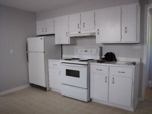 Downtown 1 brd Apartment Available