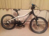 Specialized Hotrock 20 Kids Bike (suit 6-9yrs)