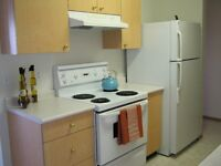 Beautiful pet friendly 2 bedroom w/ insuite laundry Avilable now