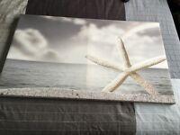 Starfish Canvas 112cm X 66cm *reduced price