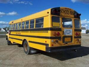 School Bus Bodies for Storage or ???