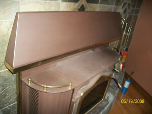 FIREPLACE INSERT/WOODSTOVE Windsor Region Ontario image 1