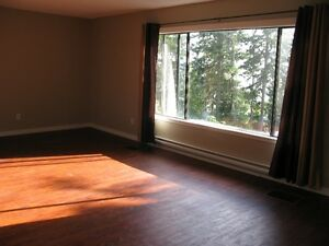 Ocean View Carriage Style Home Campbell River Comox Valley Area image 2
