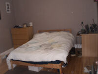 Room for Rent - Sandy Hill