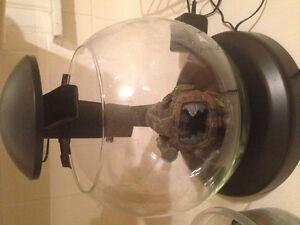 Waterfall Globe Fishbowl + Accessories