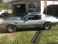 1979 TRANS AM FOR SALE! 10th anniversary, silver edition