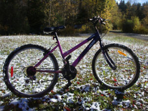 Ross Young Ladies Bicycle