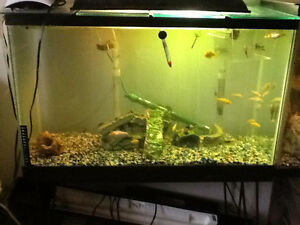 Fish tank new used pet accessories in saskatoon for How to fix a leaking fish tank